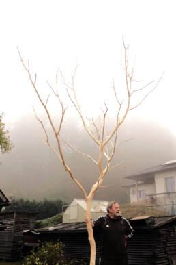 Siegfried holding a tree Lauenstein